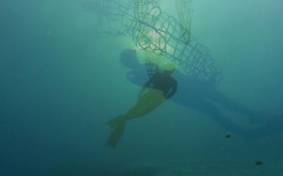 04 upside down, 2014, Filmstill, Unterwasservideo